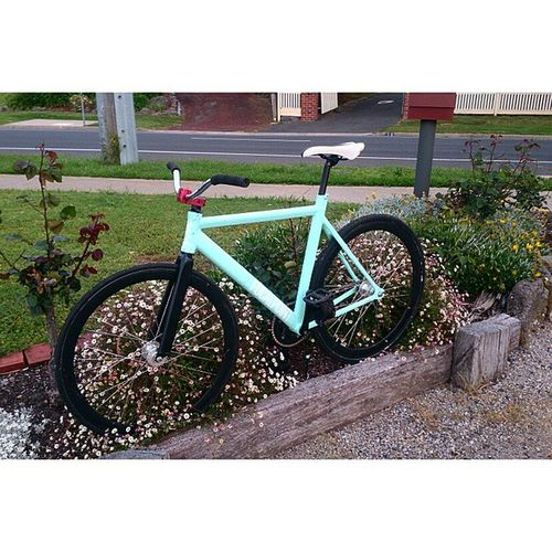 Fresh new rig Fixie Cadelevens Dprox