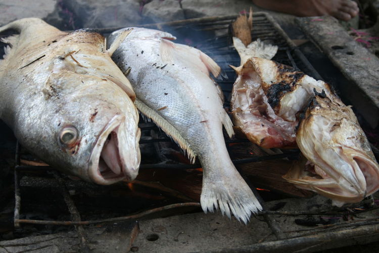 Close-up Day Fish Food Food And Drink For Sale Freshness Healthy Eating High Angle View Indoors  Market No People Raw Food Retail  Seafood