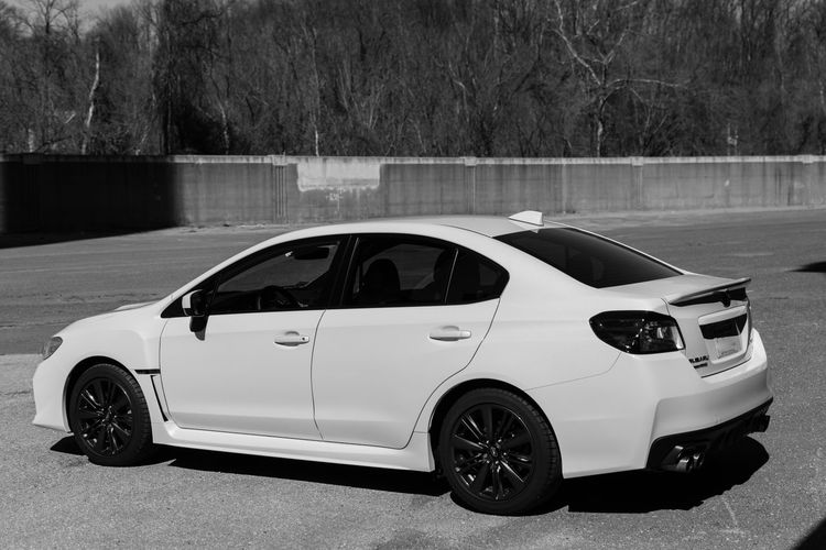2017 Subaru WRX Black And White Photography Car Day Land Vehicle Motorsport No People Outdoors Sports Car Transportation Tree White Crystal Pearl