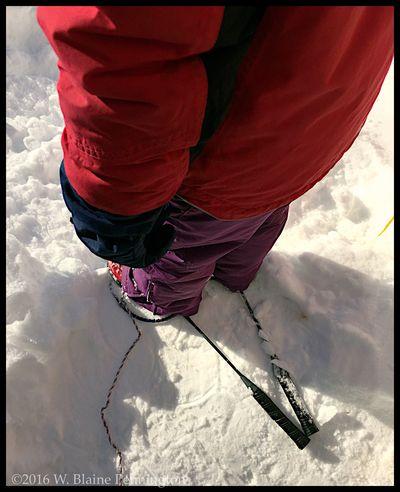 Jessie's Snow Shoes Snowzilla Epic Snow Blizzard 2016 Silver Spring Snowshoes