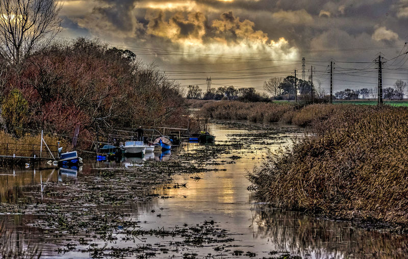 Watching the river flow Almansor River with the handmade fishing boats on the shore River View Nature No People Outdoors Reflection River Riverscape Sky Sunset Tree Water