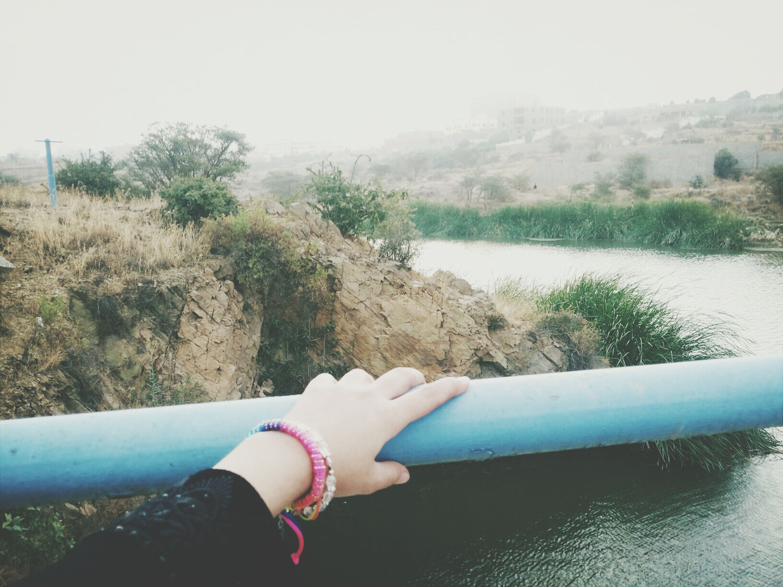 water, lifestyles, leisure activity, low section, person, tree, personal perspective, part of, nature, lake, barefoot, day, holding, river, sea