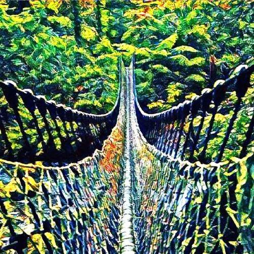 Colour Of Life Bridges.....