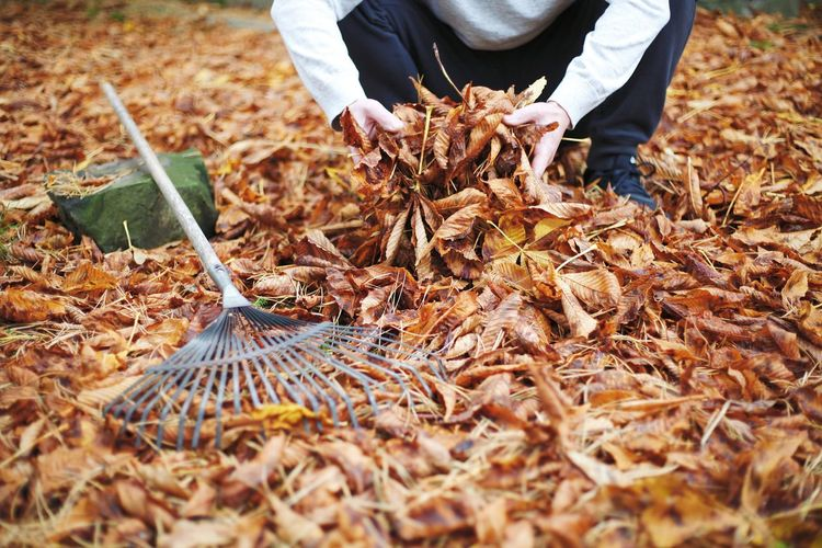 Midsection of man working on field during autumn