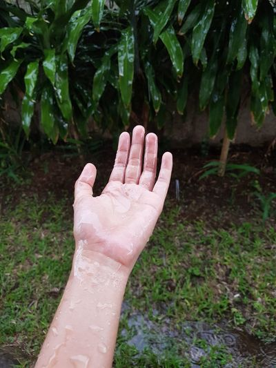 Close-Up Of Woman Hand In Rain