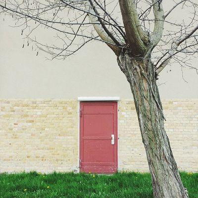 Thereddoor Thattree Wolfen Klassenfahrt springtrip vscocam