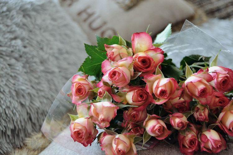 Rose - Flower Rose🌹 Flower Flower Head Fruit Red Bouquet Rose - Flower Close-up Served Blooming