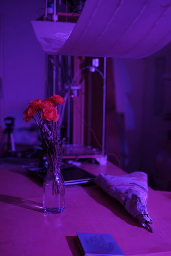 Close-up of purple flower vase on table at home