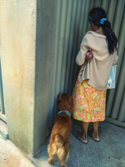 Portrait Of A Woman Woman Dog Dogoftheday Dog Love Mulher Lightroom 5 Moblie Lightroom Streetphotography Street