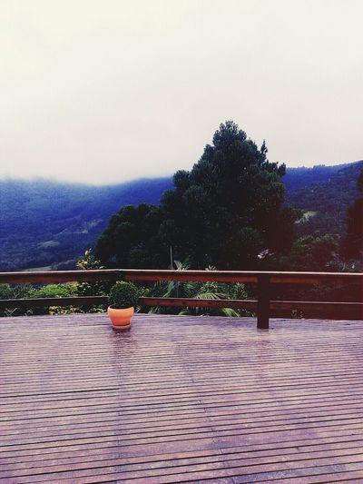 Lush landscape!! 😍🌸🍃🙏 Maenatureza Nature Good Vibes Paz ✌ Belezanatural