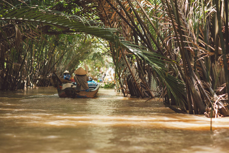 Person traveling in boat on river amidst palm trees