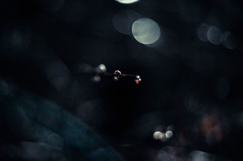 Defocused image of lights in the dark