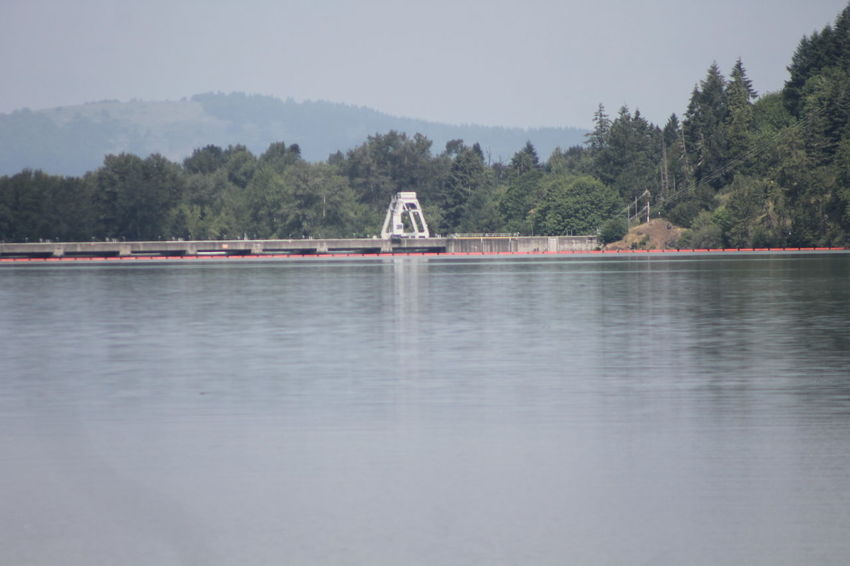 Just a lazy day! Eugene Oregon Kickin It Landscape Relaxing Water Water_collection