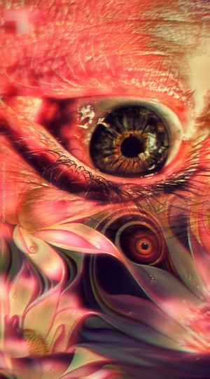 Eyeball Eyelash