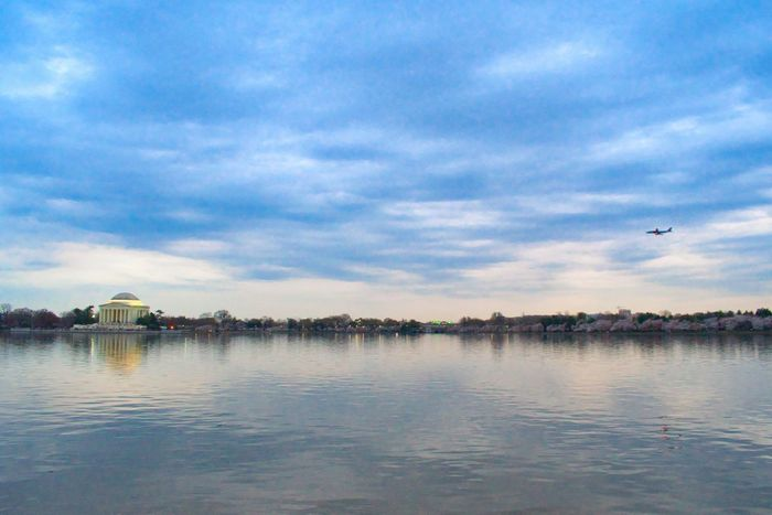 Tidal Basin Tidal Basin Cherry Blossoms Airplane Architecture Beauty In Nature Blue Building Exterior Built Structure Cloud - Sky Day Jefferson Memorial Lake Nature No People Outdoors Scenics Sky Tranquil Scene Tranquility Water Waterfront