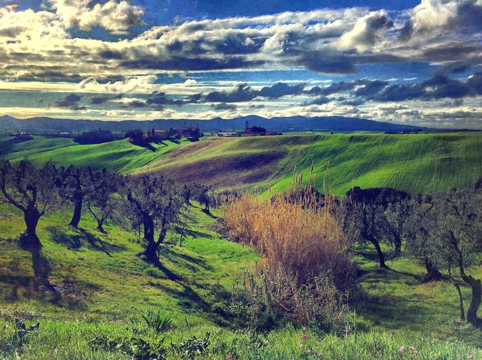 EyeEm Best Shots - Landscape IPhoneography EyeEmBestPics