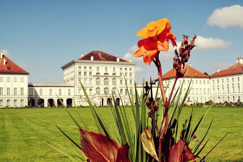 Palacio Schloss