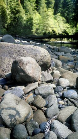 Heart Rock River Life Exploring Take A Break Find Things In Nature Rocks Rocks And Water Redwoods Enjoying Life Taking Photos Stopping To Enjoy Nature Smartphonephotography Motorola The Great Outdoors - 2016 EyeEm Awards Lobuephotos Mobile Photography EyeEM Beach Photography EyeEm Nature Lover Eyeem River Life Original Experiences Beautifully Organized My Year My View Place Of Heart