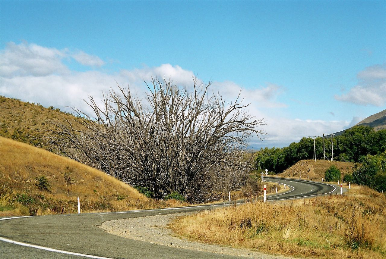 tree, road, sky, transportation, day, cloud - sky, outdoors, beauty in nature, no people, nature, mountain, the way forward, tranquility, curve, scenics, bare tree, winding road, mountain road