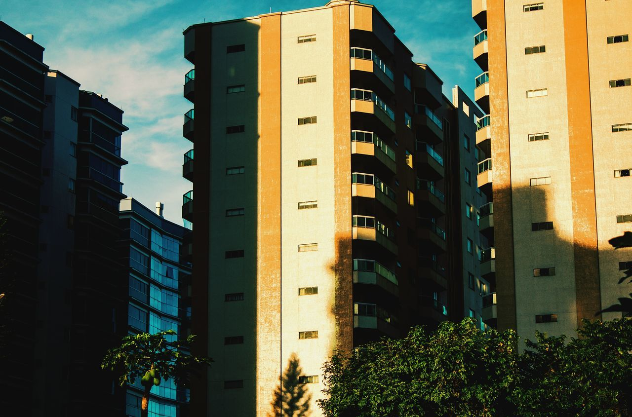 architecture, building exterior, built structure, low angle view, no people, outdoors, growth, city, sky, modern, day, tree