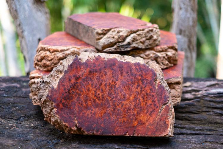 Logs Amboyna