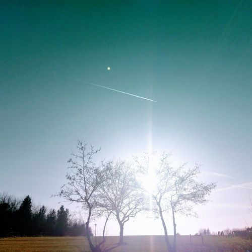 Trees And Sky Trees No People Sky Nature Outdoors Nature On Your Doorstep Photography Tranquil Scene Silhouette Landscape Aeoroplane Sunlight Sunbeam Sunshine Tree Celebration Motion Water Moon Beauty In Nature Day Annual Event
