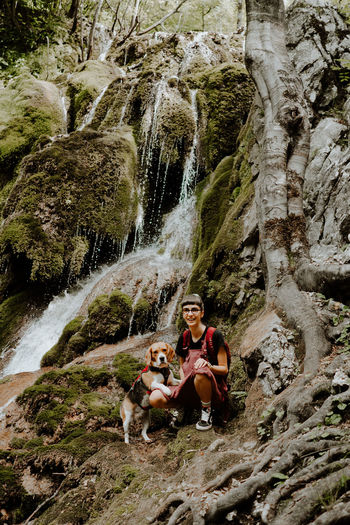 Dog sitting on rock by waterfall
