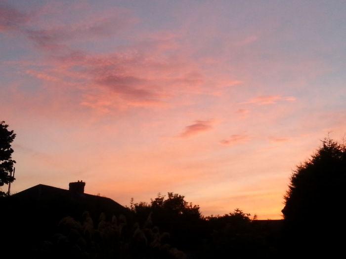 Sky was gorgeous last night Nightview Sky Beautiful Sunset