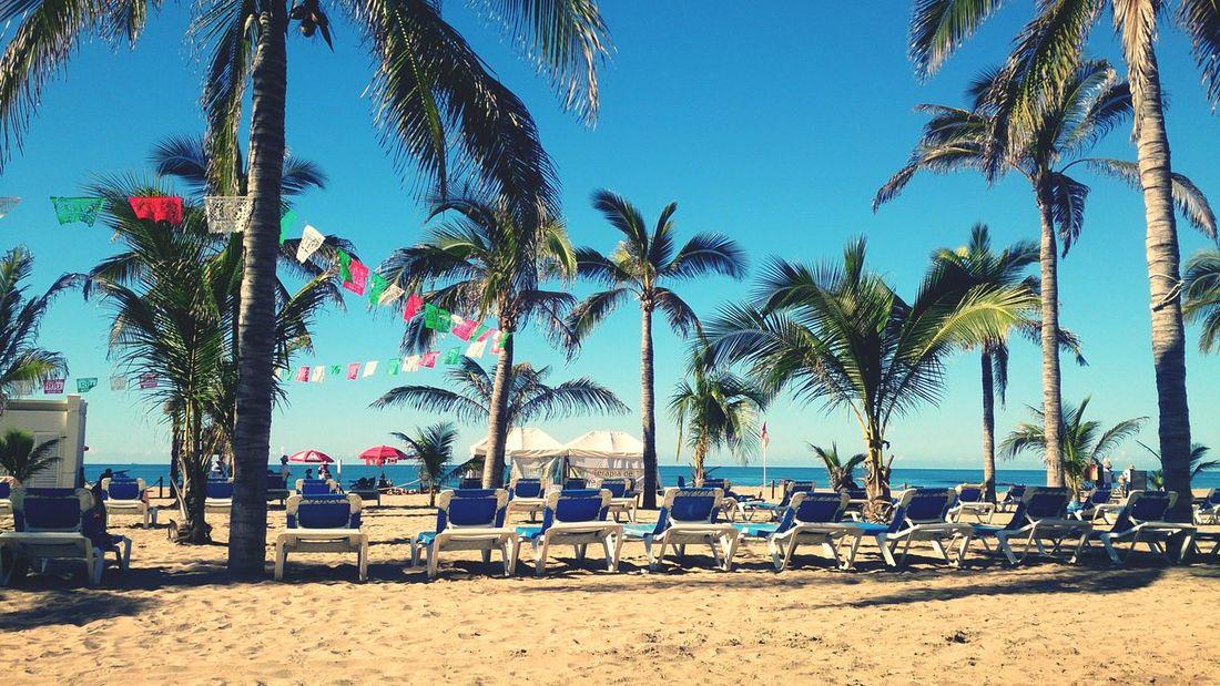 Beach Sand Relaxing Traveling Enjoying The View Sun Pacific Ocean