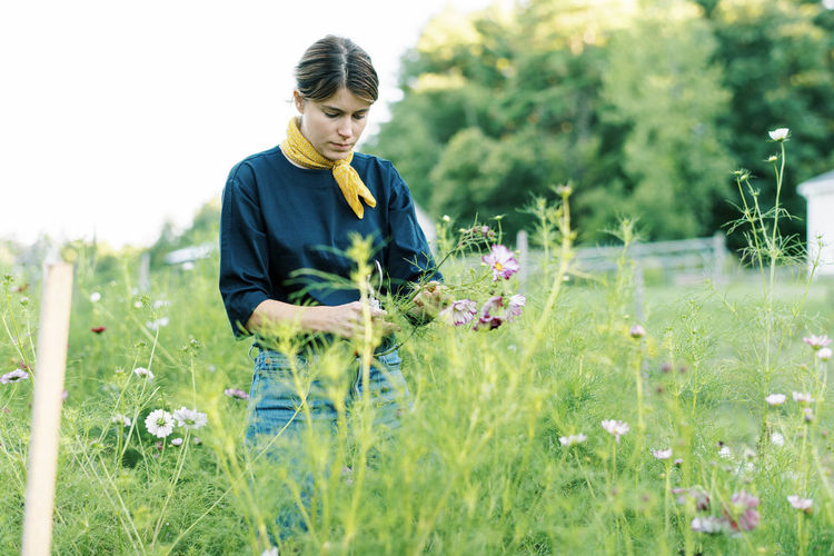 Full length of woman holding flowering plants on field