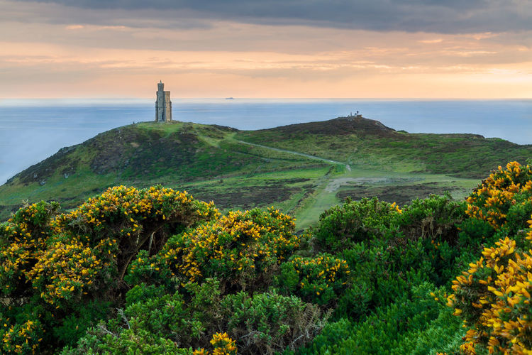 Beauty In Nature Scenics - Nature Sky Plant Sea Tranquil Scene Nature Tranquility Water Cloud - Sky Growth Land Non-urban Scene Flower Idyllic Tree Flowering Plant Guidance Horizon Over Water Outdoors Golden Hour Isle Of Man Brad Head Tower Clouds