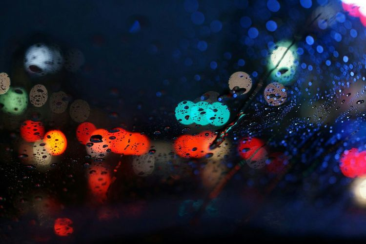 비오는 날 어느날