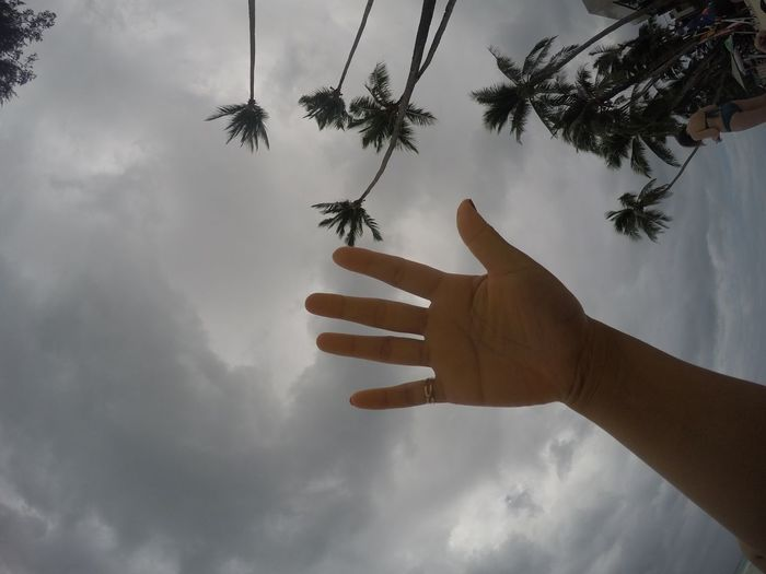 Hand in the sky