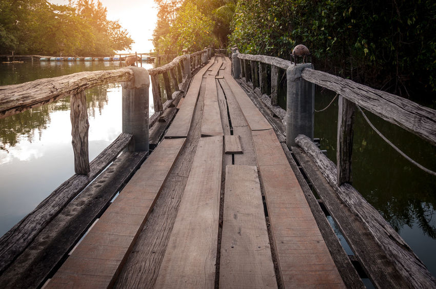 Wood walkway path over river and through tropical forest Architecture Bridge Bridge - Man Made Structure Built Structure Connection Diminishing Perspective Direction Footbridge Footpath Long Nature No People Outdoors Plant Railing River The Way Forward Tree Water Wood Wood - Material Wood Paneling