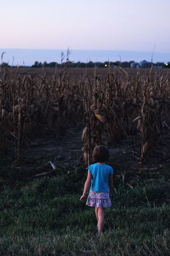 Full length rear view of girl walking at farm during sunset