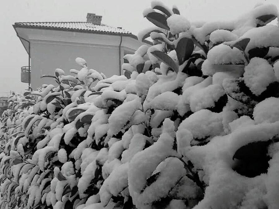 Italia Snow ❄ Cuneo