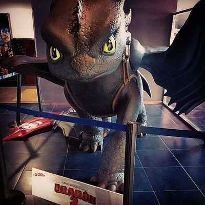 Toothless a tamaño real ?