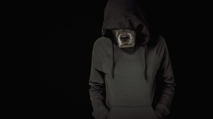 Person in dog costume with hands in pockets standing against black background
