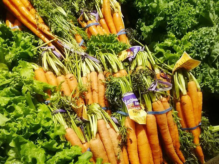 organic Carrots Organic Cultivation Organic Vegetables Organic Produce Eyem Vegetarian Vegie Lover Close-up Freshness Edmonton, AB Eyeem Edmonton Alberta