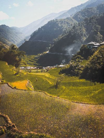 Hagdan-Hagdan Palayan ( Rice Terraces ) Philippines Scenics - Nature Landscape Beauty In Nature Mountain Environment Land Green Color Philippines Explore