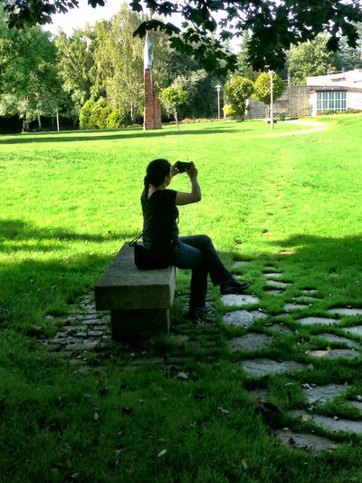 Taking Photos Taking Pictures Silhouette Park Bench Nature