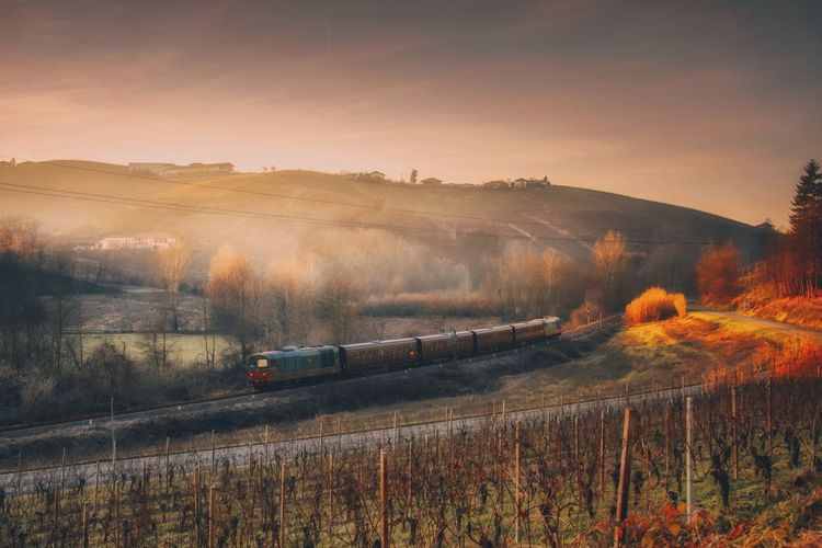 Environment Sky Transportation Landscape Nature Field Plant Mode Of Transportation Land Scenics - Nature Train No People Tree Beauty In Nature Sunset Tranquil Scene Rail Transportation Tranquility Train - Vehicle High Angle View Outdoors Tree Langhe Piedmont Italy