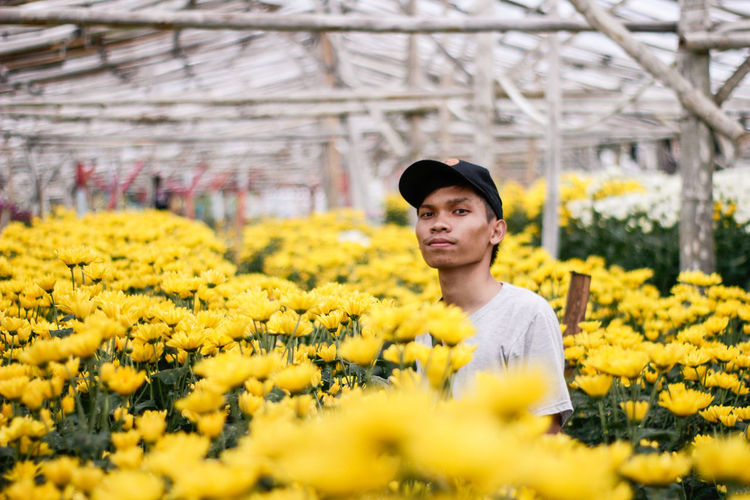 Portrait of man standing amidst yellow flowers