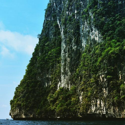 Majestic sight Tree Water Nature Beauty In Nature Outdoors Sky Green Color No People Day Cliff Sea Growth Forest Scenics Thailand Trip ThailandOnly Thailand Travel