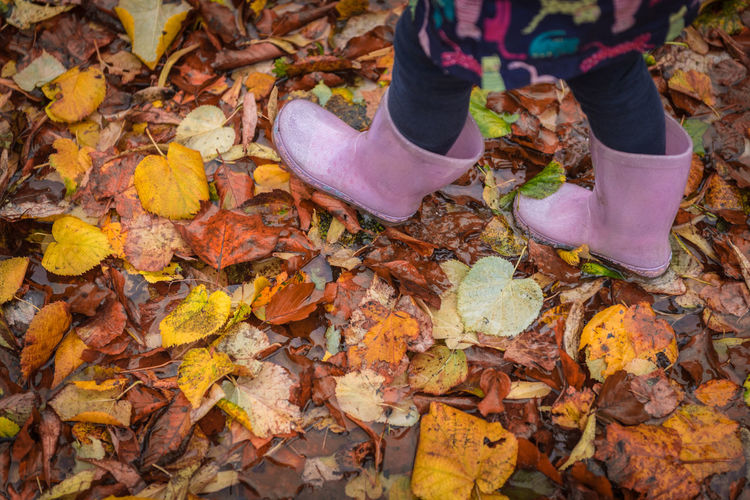 Ground Human Body Part person One Person Childhood Boots Feet Child Outdoors Leaf Autumn Change Full Frame Backgrounds High Angle View Close-up Autumn Collection Leaves Fall Kid