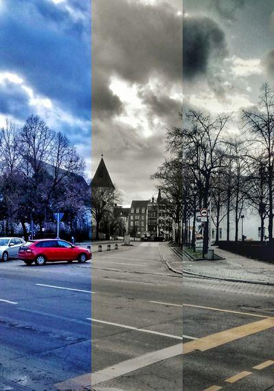 Tree City Storm