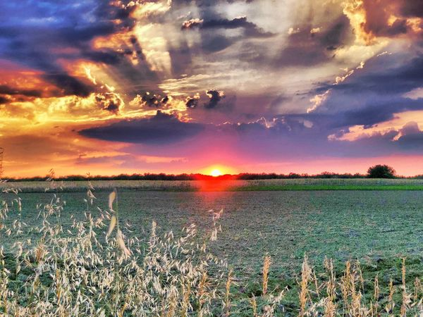 Cloud - Sky Sky Sunset Scenics - Nature Beauty In Nature Land Tranquil Scene