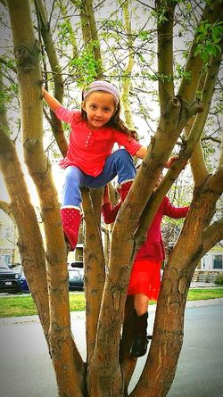 Tree Childhood Outdoors Smiling People Happiness Real People Girls Children's Portraits ınstagram EyeEm Selects Facebook Leisure Activity My Twin Girls Only Girls Family Friendship Two People Twin Sisters Twins Kids Being Kids Kids Playing Climbing Trees Outdoor Activity Summertime Fun