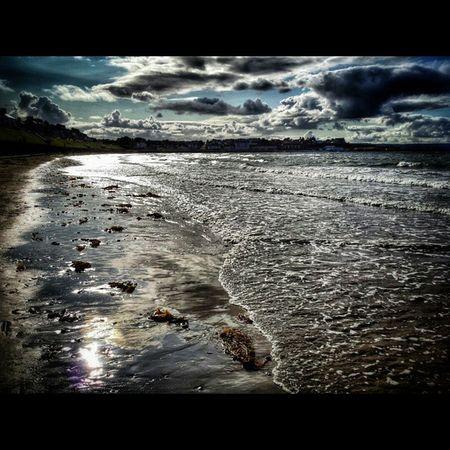 Seaweed footsteps.