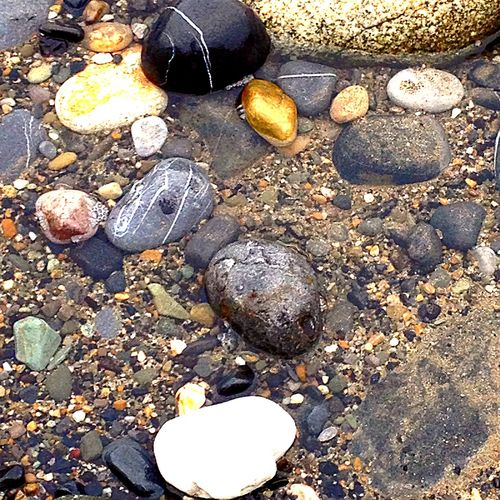 Rock pool Sea Rock Rock Formation Rocks Rocks And Water Rock Pool Rocks On The Shore Rocks And Sand Rocks In Water Rocks And Sea Rocks In The Water Rocks On The Beach Rocks In The Sea Rocks And Pebbles Pebbles And Stones Pebbles Beach Pebbles On A Beach Pebbles And Water Pebble Beach Pebbles Pattern Pebbles And Sand Pebbles Pebblebeach Beach Photography Pebble